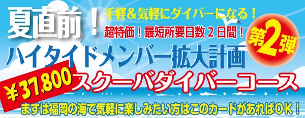 夏直前!ハイタイドメンバー拡大計画 第二弾!